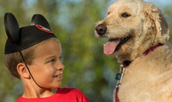 Perros en Disney